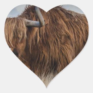 Sticker Cœur Yaks de Brown sur le vert et le champ d'herbe de