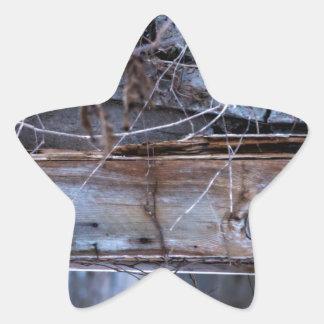Sticker Étoile Abandonné