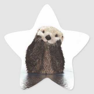 Sticker Étoile Animal pelucheux adorable mignon de loutre