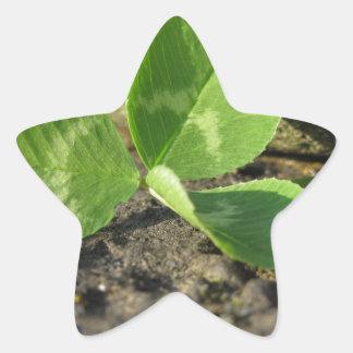Sticker Étoile Arrière - plan du jour de St Patrick avec le