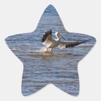 Sticker Étoile Atterrissage de pélican