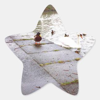 Sticker Étoile Au loch