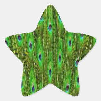 Sticker Étoile Belles plumes de paon