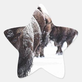 Sticker Étoile Buffalo