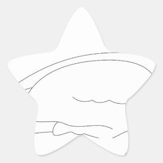 Sticker Étoile canard #3