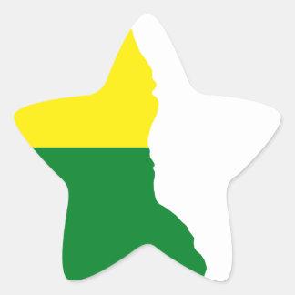 Sticker Étoile Carte de drapeau du Delaware LGBT