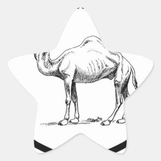 Sticker Étoile cercle du chameau