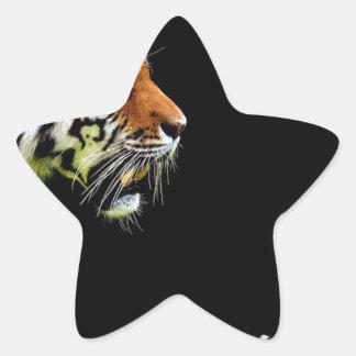 Sticker Étoile Chat dangereux de fourrure prédatrice de tigre