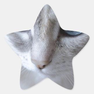Sticker Étoile Chat de Kisa d'yeux bleus