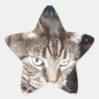 Sticker Étoile Dave vous observant