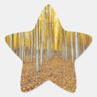 Sticker Étoile Ferme d'arbre de peuplier dans Boardman Orégon