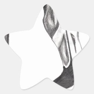 Sticker Étoile Flamant de fantaisie