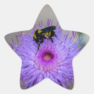 Sticker Étoile Fleurs sauvages de pollination d'abeille