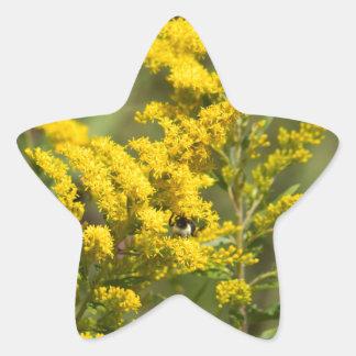 Sticker Étoile Fleurs sauvages dorés