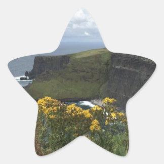 Sticker Étoile Fleurs sur les falaises de Moher