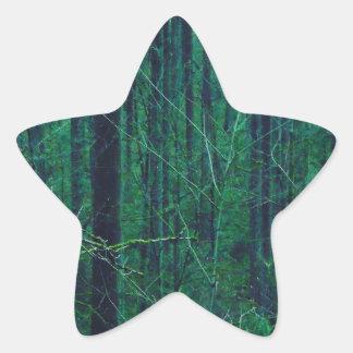 Sticker Étoile Forêt verte