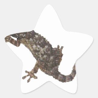 Sticker Étoile gecko