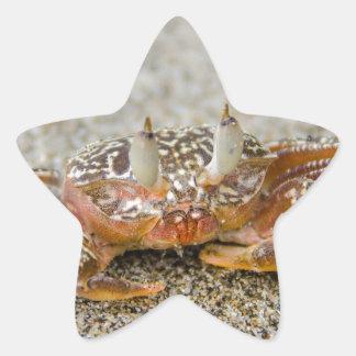 Sticker Étoile Griffes de crabe