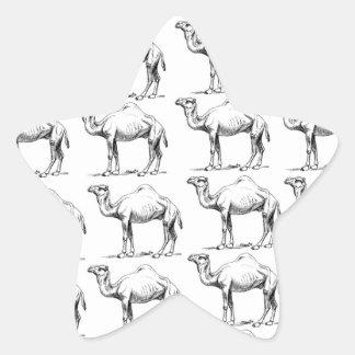 Sticker Étoile groupe de troupeau de chameaux