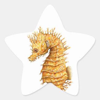 Sticker Étoile Hippocampe de hippocampe d'hippocampe