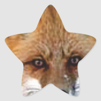 Sticker Étoile image de fantaisie de renard