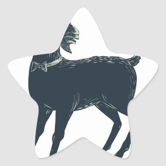 Sticker Étoile La cravate d'arc de port de chèvre Scratchboard