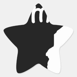 Sticker Étoile le Minnesota
