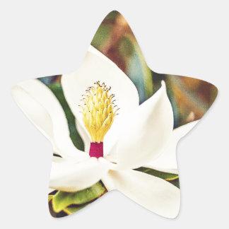 Sticker Étoile Magnolia magnifique du Mississippi