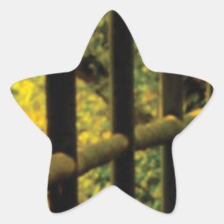 Sticker Étoile mousse sur la barrière