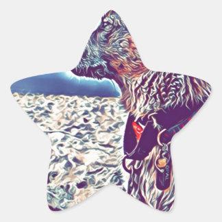 Sticker Étoile Opale le bon à rien Heeler de plage