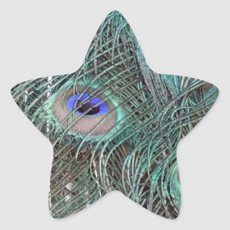 Sticker Étoile plumes de paon