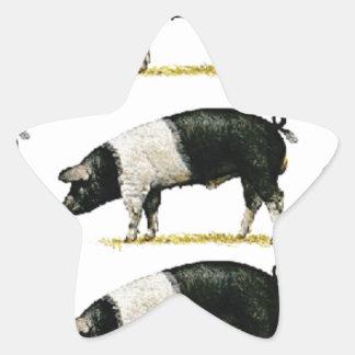 Sticker Étoile porcs dans une rangée