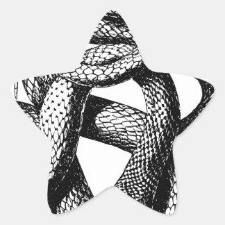 Sticker Étoile Serpent tordu