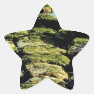 Sticker Étoile texture verte de bloc