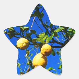 Sticker Étoile Trois citrons siciliens