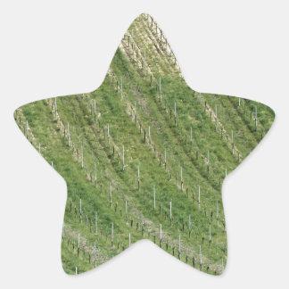 Sticker Étoile Vue pittoresque de flanc de coteau de roulement