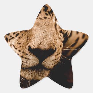 Sticker Étoile yeux de égrappage de l'eau de jaguar