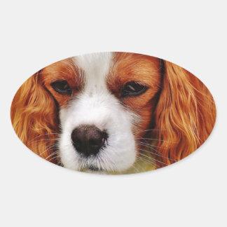 Sticker Ovale Animal de compagnie drôle cavalier d'épagneul du