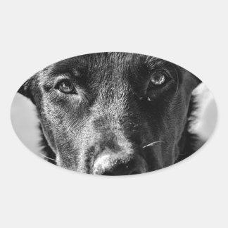 Sticker Ovale Animal familier canin de chien