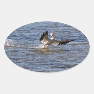 Sticker Ovale Atterrissage de pélican