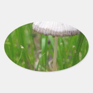 Sticker Ovale champignon de bébé
