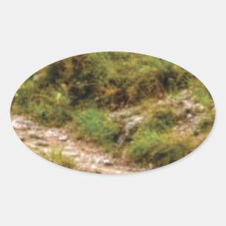 Sticker Ovale chemin herbeux