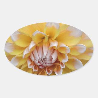 Sticker Ovale Dahlia jaune et blanc