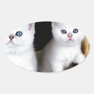 Sticker Ovale Deux chatons blancs dans le panier sur