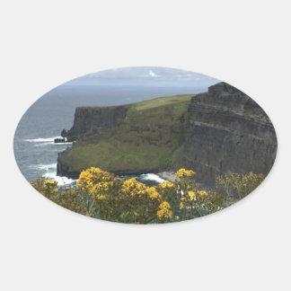 Sticker Ovale Fleurs sur les falaises de Moher
