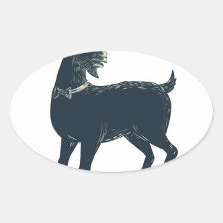 Sticker Ovale La cravate d'arc de port de chèvre Scratchboard