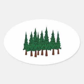 Sticker Ovale La forêt à feuillage persistant