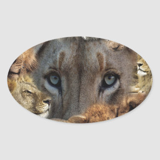 Sticker Ovale Lions heureux