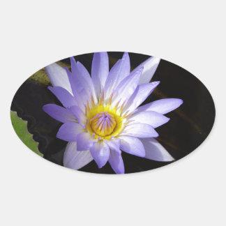 Sticker Ovale lotus bleu du Nil