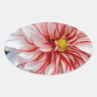 Sticker Ovale Menthe poivrée florale